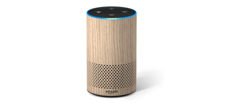 Amazon Echo Hülle