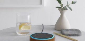 Amazon Echo Dot-Hülle naturleder
